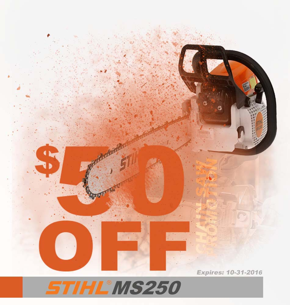 Stihl MS250 Promotion