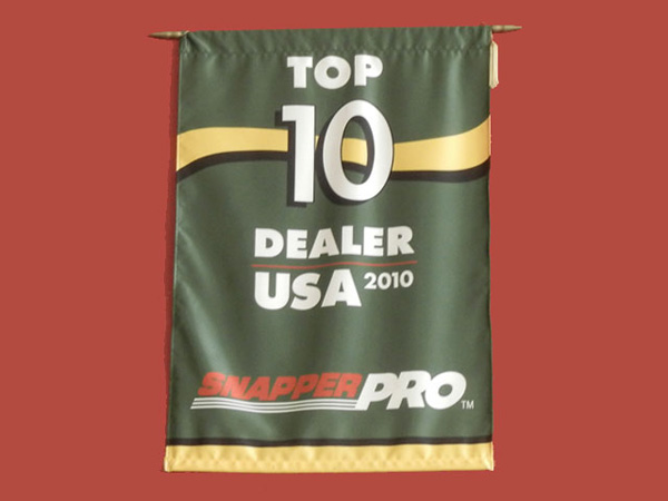 snapper pro 2010 top 